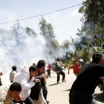 WikiLeaks –The non-violent demonstrations in the west bank are becoming increasingly frustrating the IOF