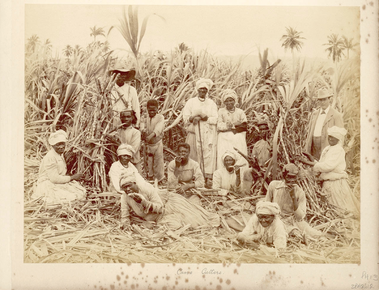 problems facing sugar planters british colony jamaica duri The problems-----the islands of the british west indies saw foreign competition from the slave grown sugar of louisiana and cuba however, by the 1860's, due to a loan from the british government, trinidad, antigua, barbados, british guiana and st kitts all survived the equalization crisis.