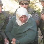 Åpent møte: The struggle for Palestine