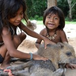 Giving the Amazon rainforest back to the Awa tribe