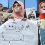 More prisoners in Egypt join hunger strike